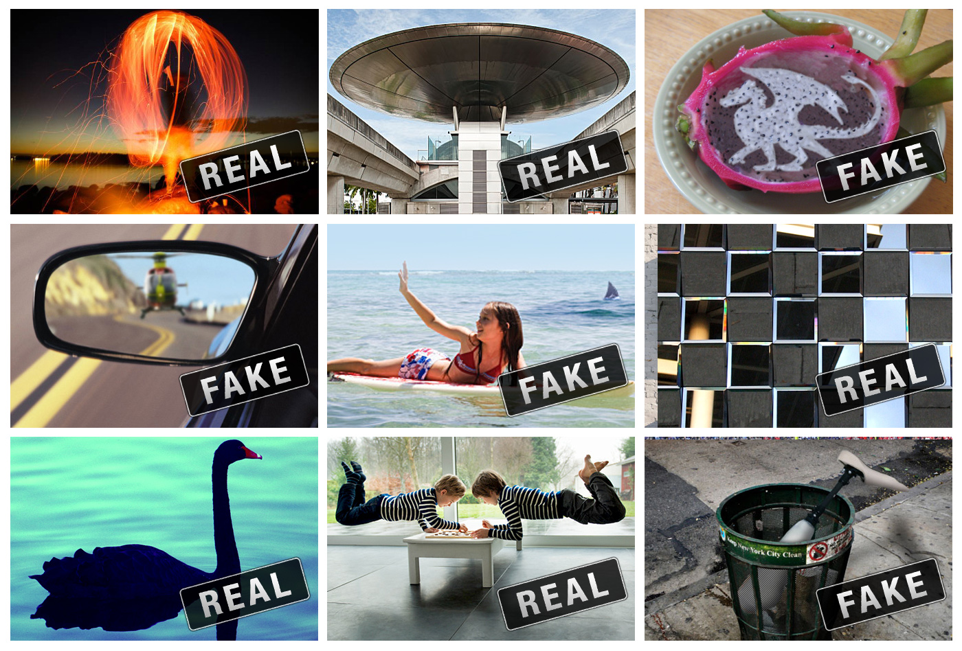 Adobe Real or Fake Campaign by Traction