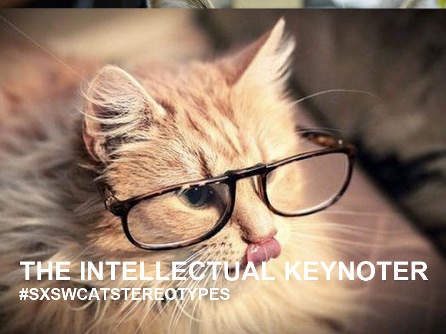 Keynoter cat