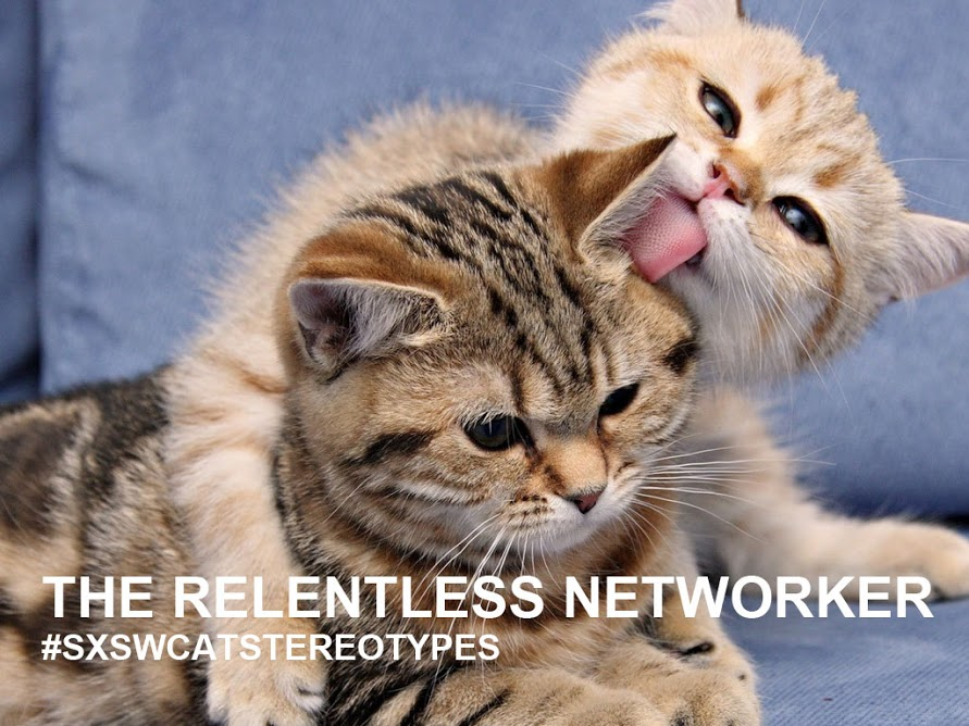 Networker cat