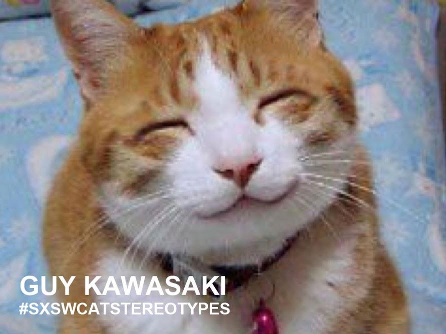 Kawasaki cat