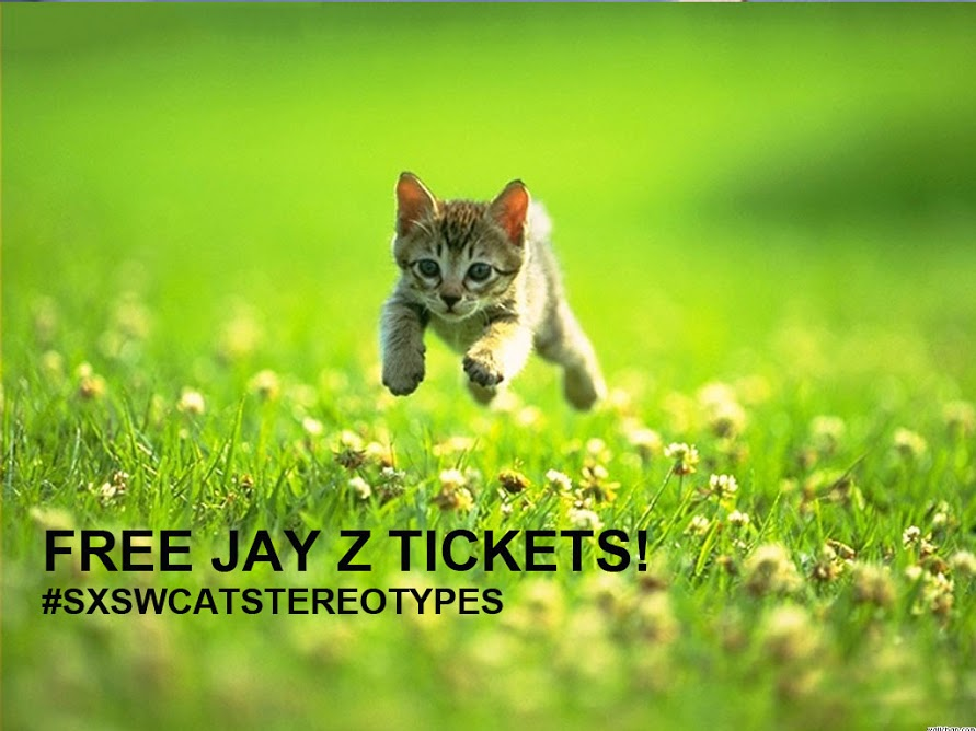 Jay z cat