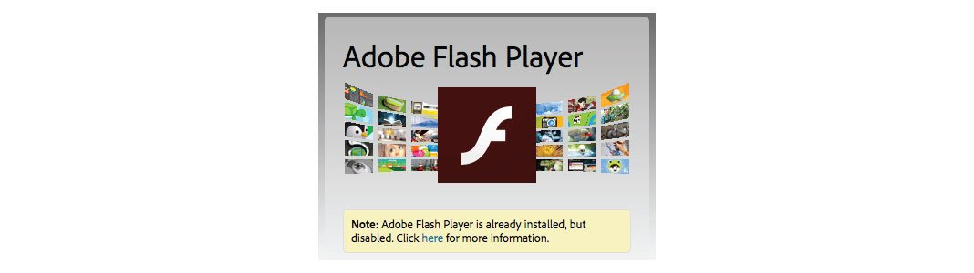 Flash player installed but disabled